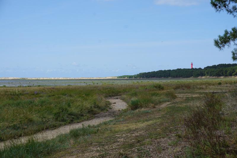 Bonne-Anse à marée basse et le phare de la Coubre