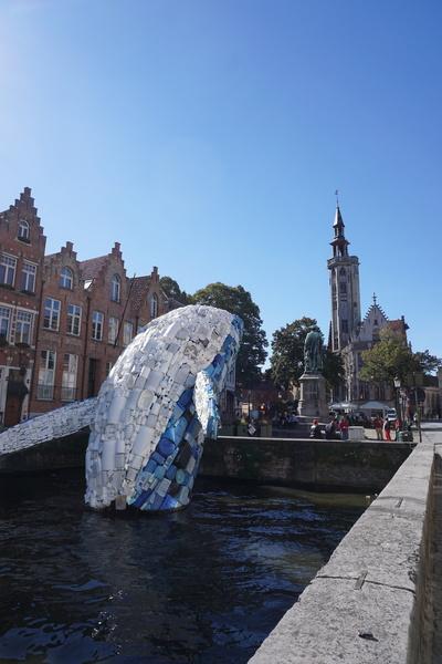 Une baleine de plastique à Brugge
